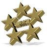 five-star-service